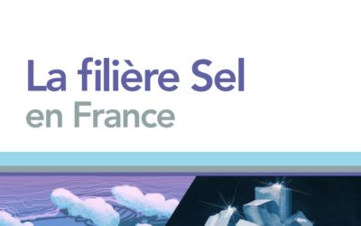 La filière sel en France