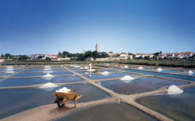 Coopérative des producteurs de sel – Noirmoutier – Noirmoutier (Vendée)
